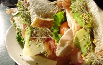 SandwichTurkey